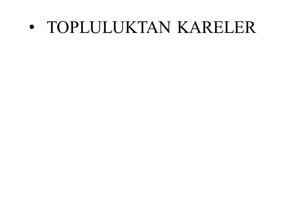 TOPLULUKTAN KARELER