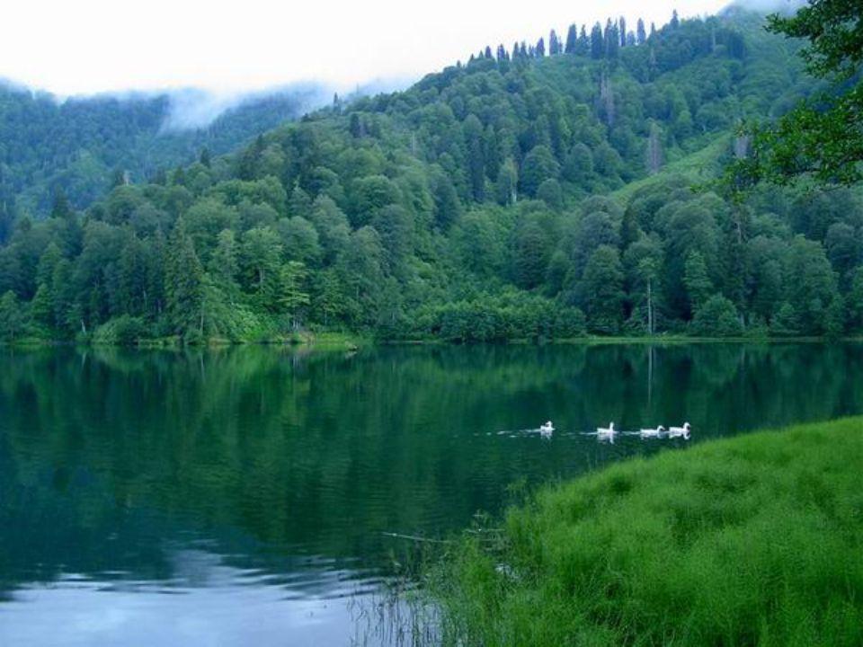 Her yöresi doğa harikası olan memleketimizin cennet köşelerinden biri… Burası ARTVİN'in KARAGÖL'ü... Hüsamettin Ataman