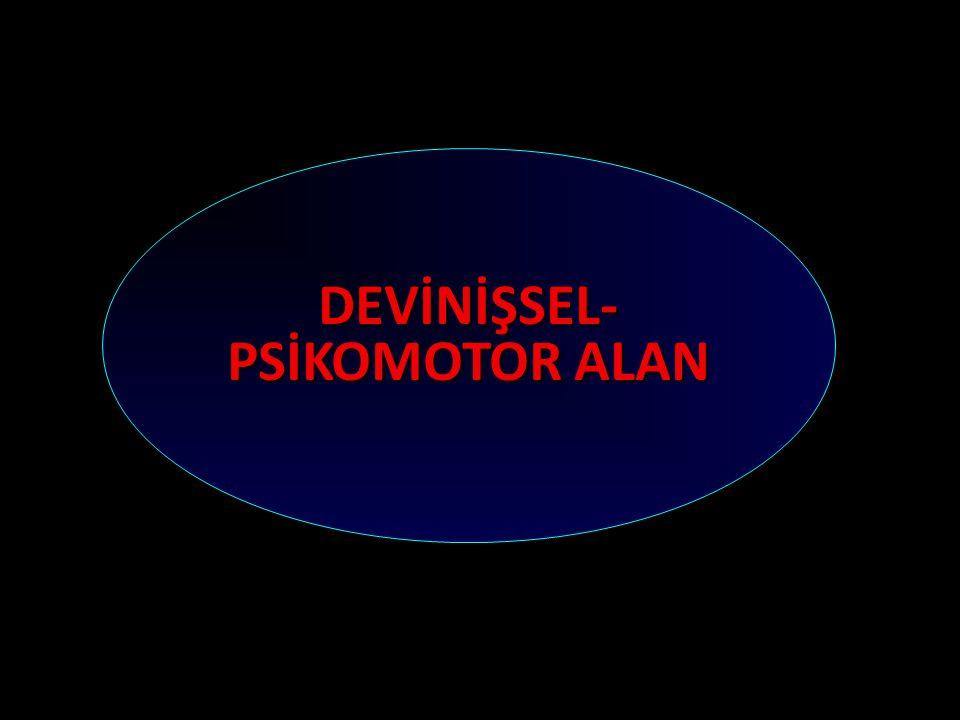 DEVİNİŞSEL- PSİKOMOTOR ALAN