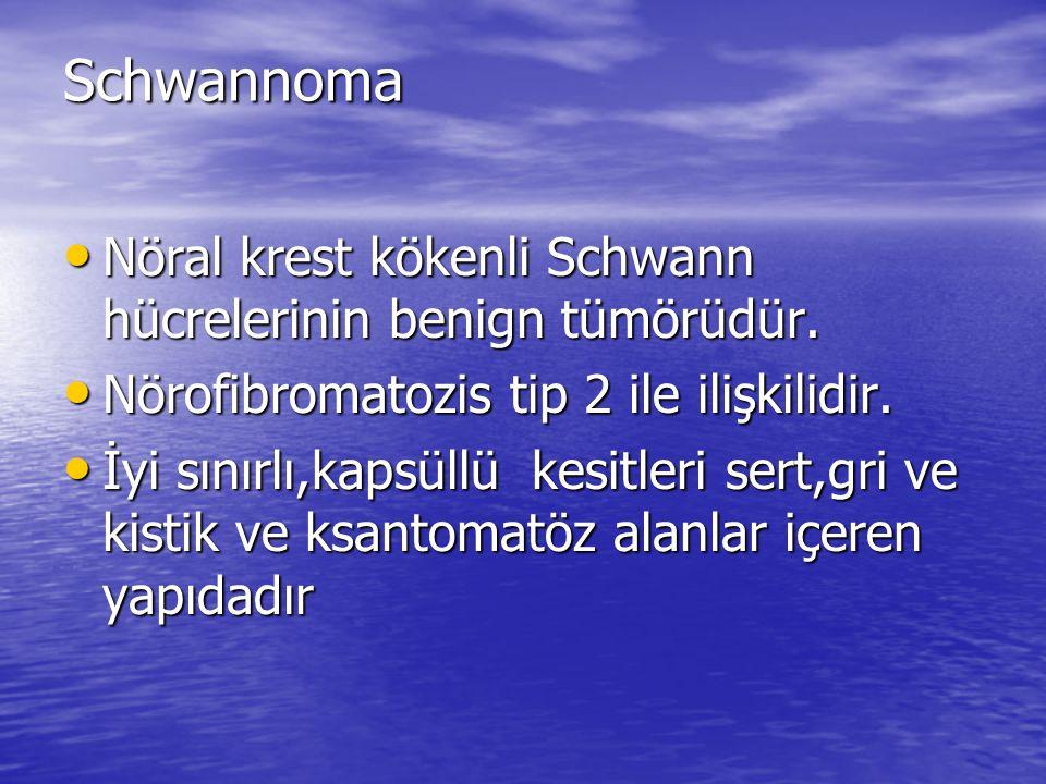 Schwannoma Nöral krest kökenli Schwann hücrelerinin benign tümörüdür.