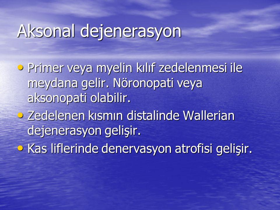 Aksonal dejenerasyon Primer veya myelin kılıf zedelenmesi ile meydana gelir.