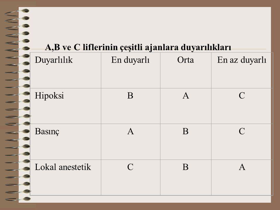 A,B ve C liflerinin çeşitli ajanlara duyarılıkları Duyarlılık En duyarlıOrtaEn az duyarlı Hipoksi BAC Basınç ABC Lokal anestetik CBA