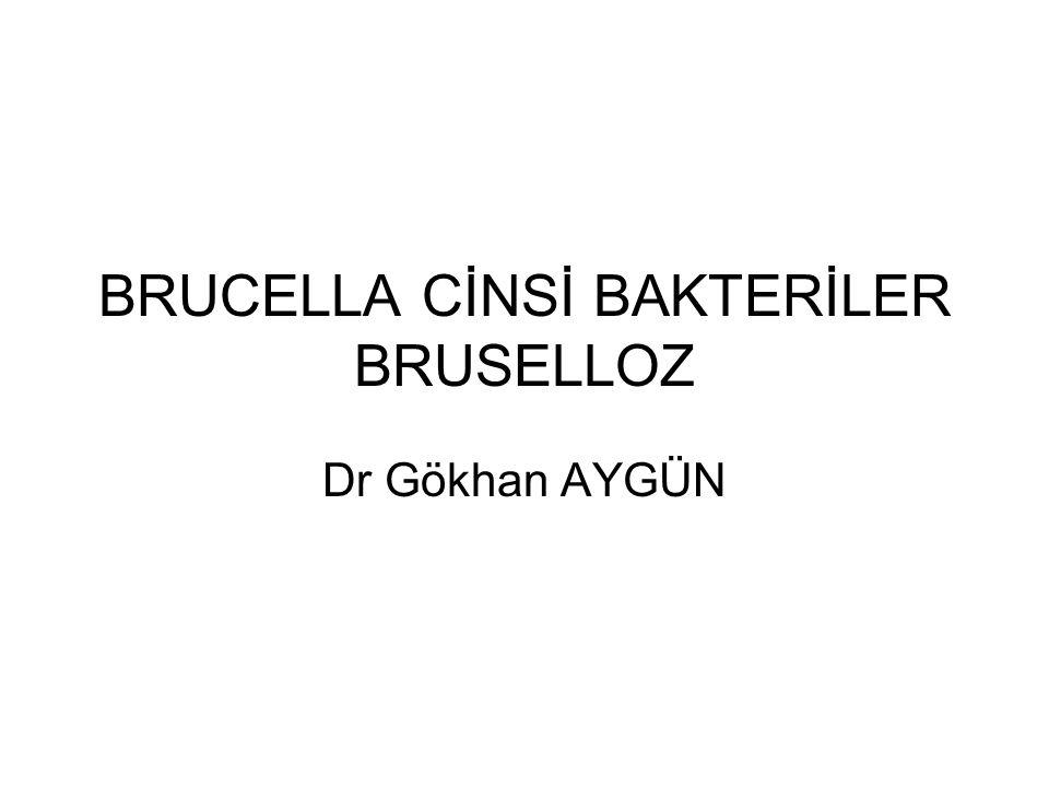 BRUCELLA CİNSİ BAKTERİLER BRUSELLOZ Dr Gökhan AYGÜN