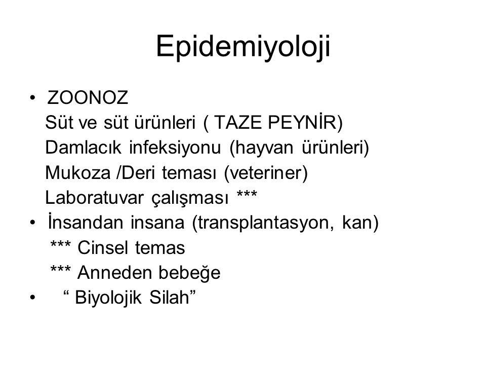 Epidemiyoloji ZOONOZ Süt ve süt ürünleri ( TAZE PEYNİR) Damlacık infeksiyonu (hayvan ürünleri) Mukoza /Deri teması (veteriner) Laboratuvar çalışması *
