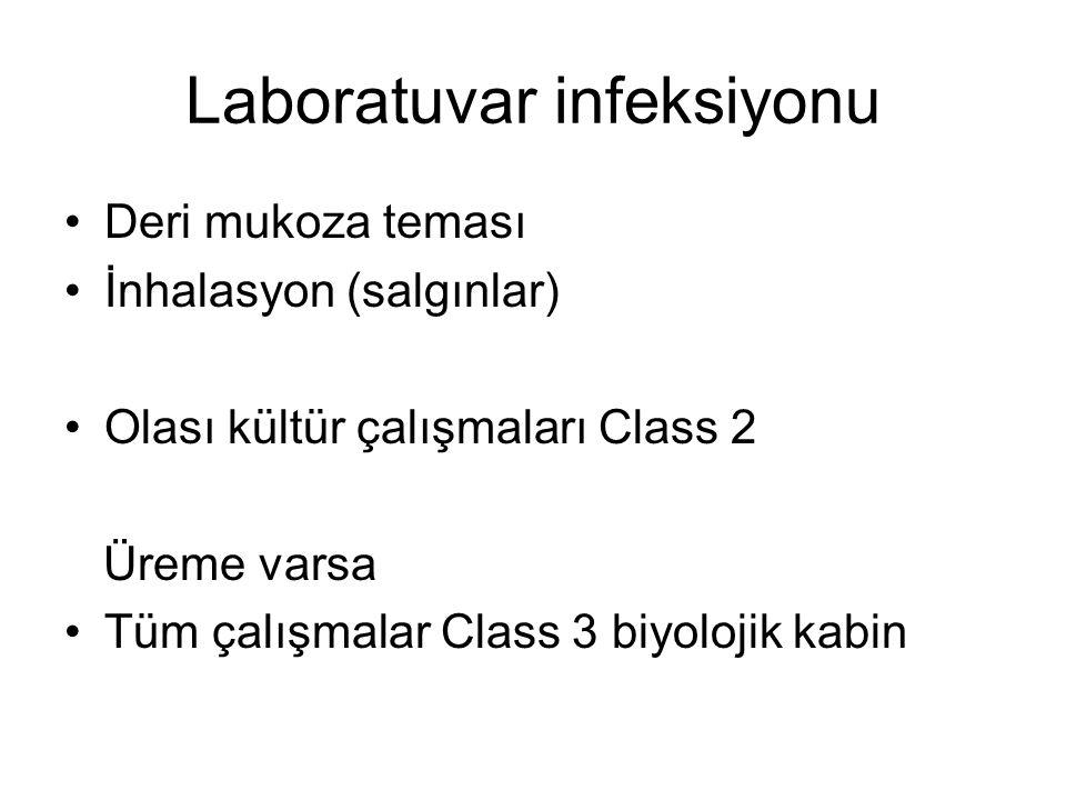Laboratuvar infeksiyonu Deri mukoza teması İnhalasyon (salgınlar) Olası kültür çalışmaları Class 2 Üreme varsa Tüm çalışmalar Class 3 biyolojik kabin