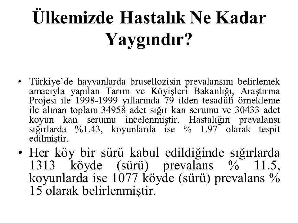 Ülkemizde Hastalık Ne Kadar Yaygındır? Türkiye'de hayvanlarda brusellozisin prevalansını belirlemek amacıyla yapılan Tarım ve Köyişleri Bakanlığı, Ara