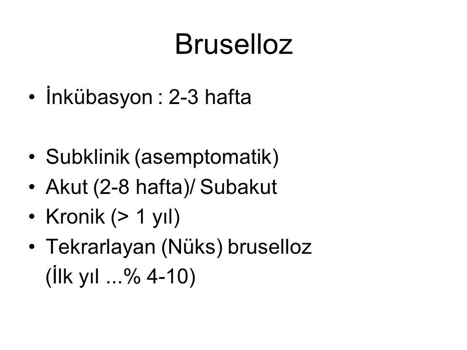 Bruselloz İnkübasyon : 2-3 hafta Subklinik (asemptomatik) Akut (2-8 hafta)/ Subakut Kronik (> 1 yıl) Tekrarlayan (Nüks) bruselloz (İlk yıl...% 4-10)