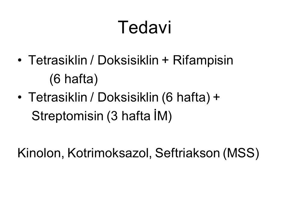 Tedavi Tetrasiklin / Doksisiklin + Rifampisin (6 hafta) Tetrasiklin / Doksisiklin (6 hafta) + Streptomisin (3 hafta İM) Kinolon, Kotrimoksazol, Seftriakson (MSS)