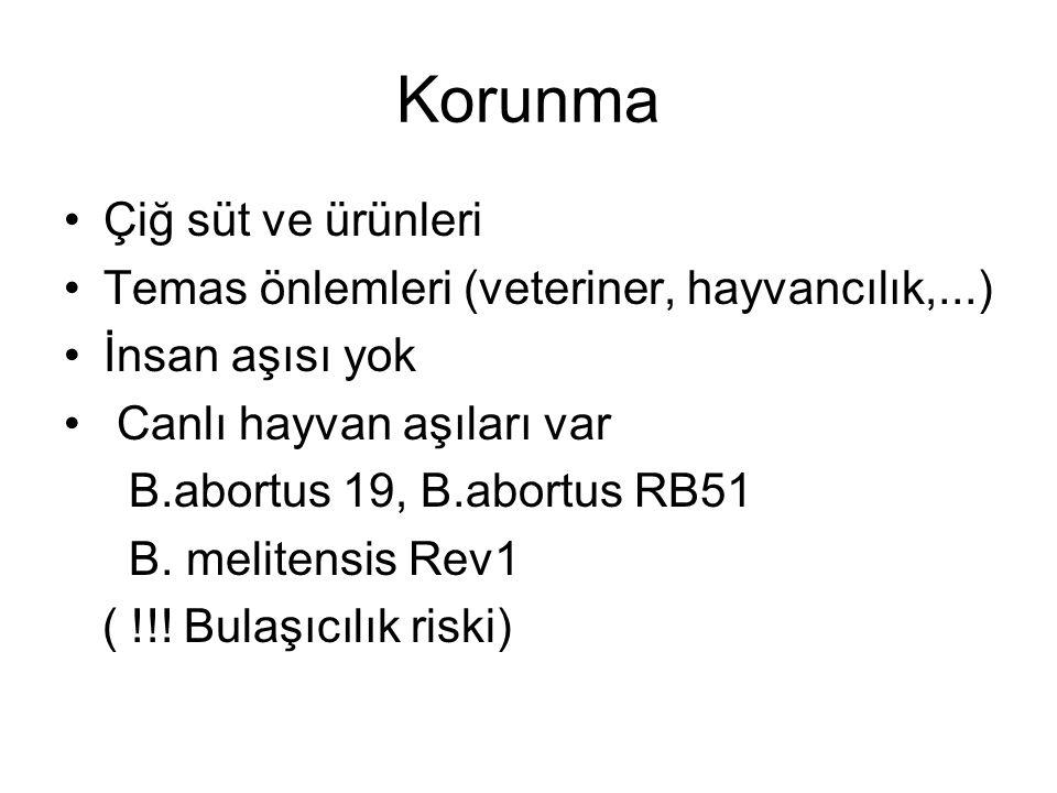 Korunma Çiğ süt ve ürünleri Temas önlemleri (veteriner, hayvancılık,...) İnsan aşısı yok Canlı hayvan aşıları var B.abortus 19, B.abortus RB51 B. meli