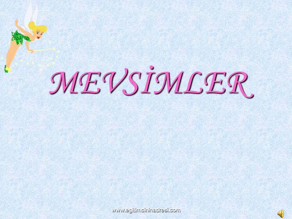 www.egitimcininadresi.com MEVSİMLER