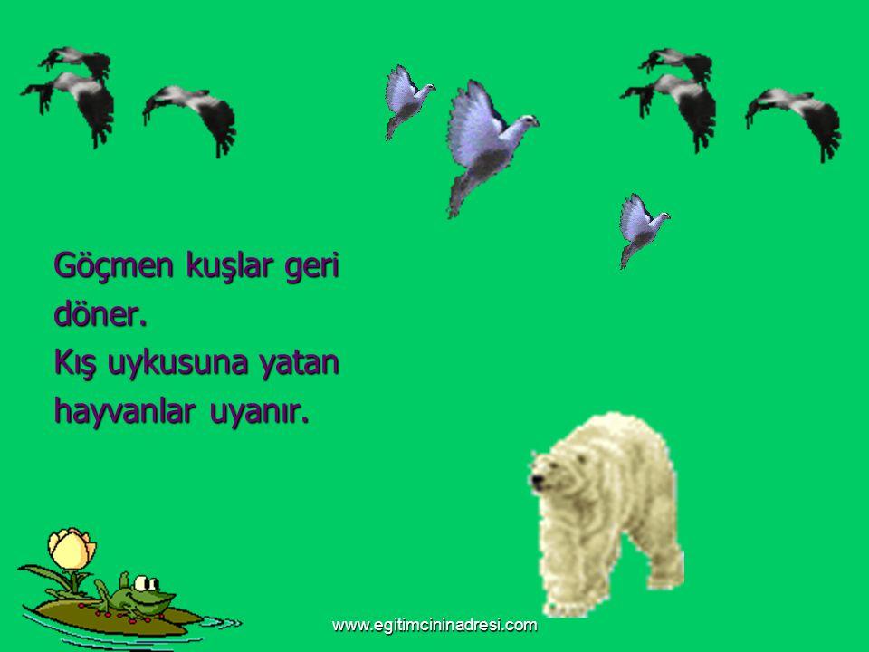 www.egitimcininadresi.com Göçmen kuşlar geri döner. Kış uykusuna yatan hayvanlar uyanır.