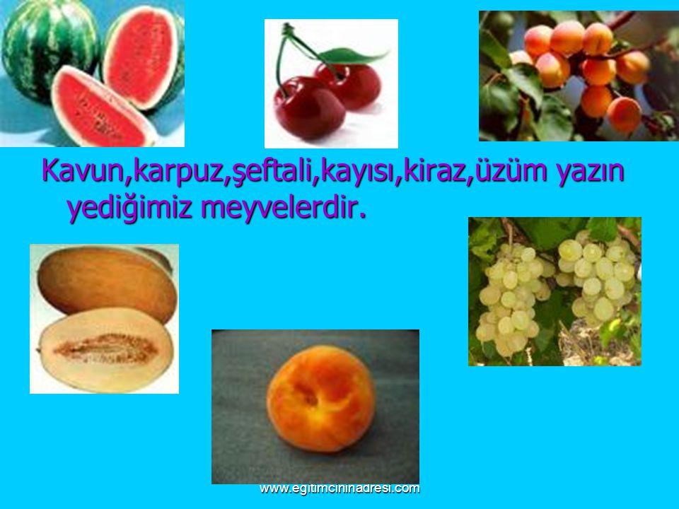 www.egitimcininadresi.com Kavun,karpuz,şeftali,kayısı,kiraz,üzüm yazın yediğimiz meyvelerdir.