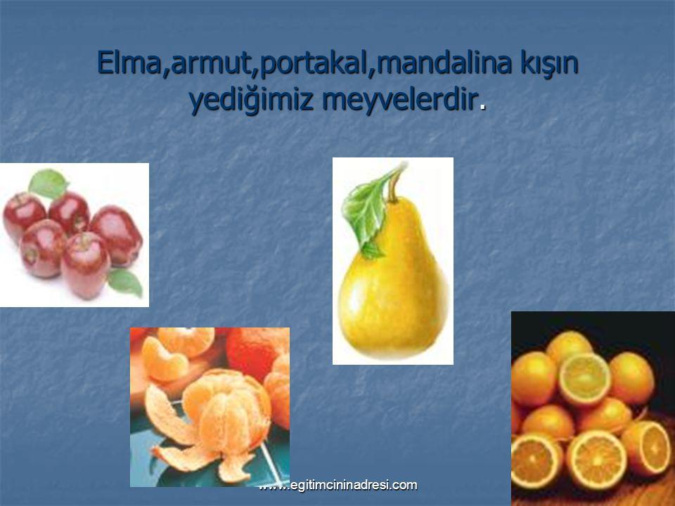 www.egitimcininadresi.com Elma,armut,portakal,mandalina kışın yediğimiz meyvelerdir.