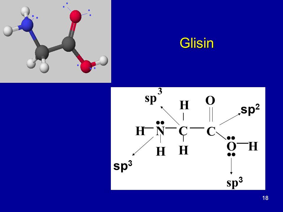 18 Glisin O C OH H H NH H sp 3 sp 3 sp 3 sp 2 C