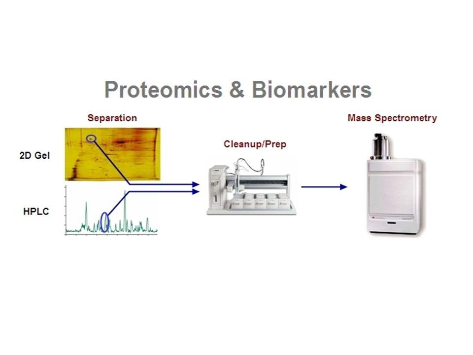 Protein Mikroarray Protein moleküllerinin, belli bir düzende cam bir yüzeye bağlanmalarıyla oluşturulur.