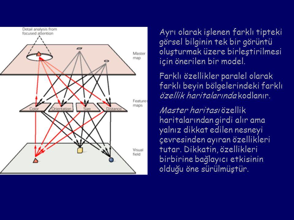 Ayrı olarak işlenen farklı tipteki görsel bilginin tek bir görüntü oluşturmak üzere birleştirilmesi için önerilen bir model. Farklı özellikler paralel