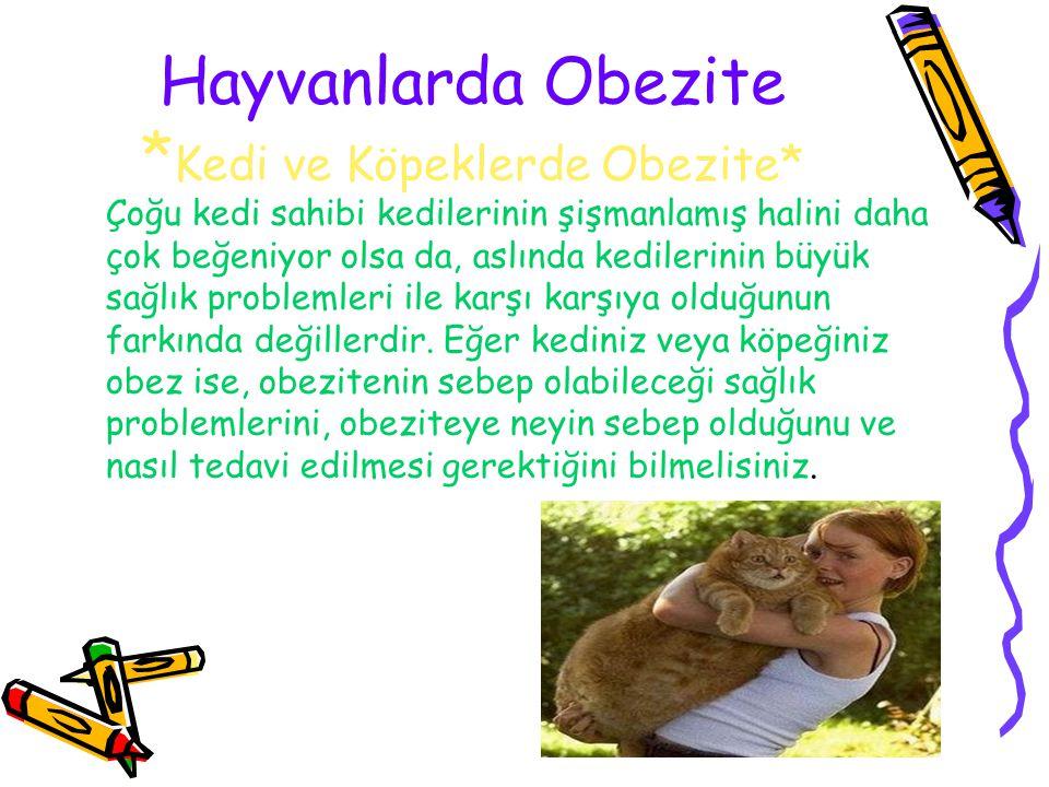 Hayvanlarda Obezite * Kedi ve Köpeklerde Obezite* Çoğu kedi sahibi kedilerinin şişmanlamış halini daha çok beğeniyor olsa da, aslında kedilerinin büyü
