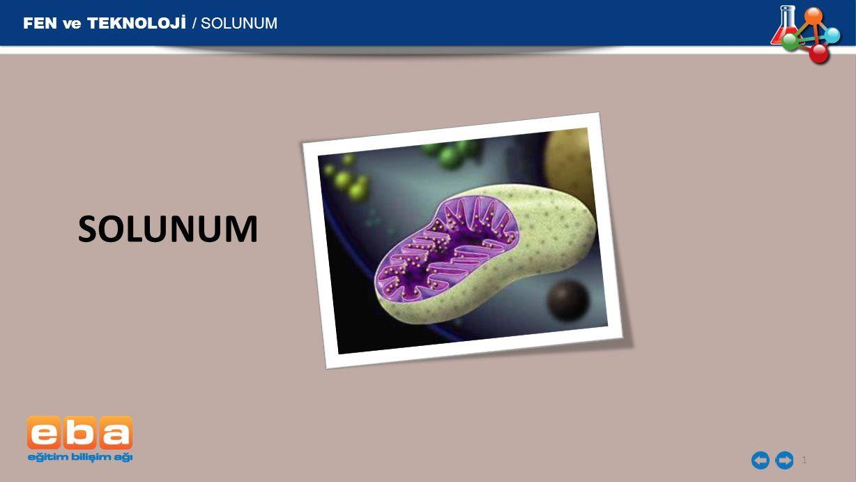 FEN ve TEKNOLOJİ / SOLUNUM 2 Canlıların ihtiyaç duydukları enerjiyi elde etmek için, besinleri oksijen kullanarak ya da oksijen kullanmadan parçalamalarına SOLUNUM denir.