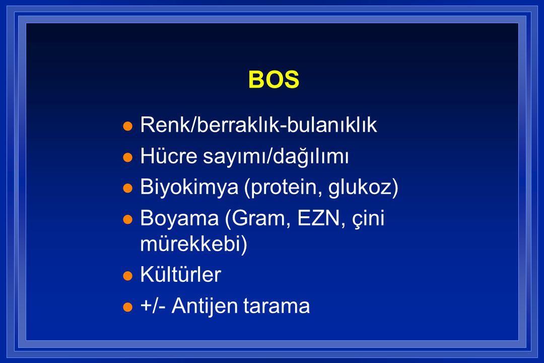 BOS l Renk/berraklık-bulanıklık l Hücre sayımı/dağılımı l Biyokimya (protein, glukoz) l Boyama (Gram, EZN, çini mürekkebi) l Kültürler l +/- Antijen t