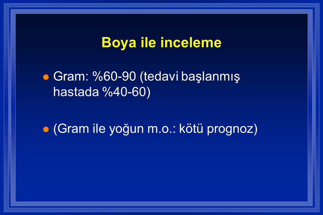 Boya ile inceleme l Gram: %60-90 (tedavi başlanmış hastada %40-60) l (Gram ile yoğun m.o.: kötü prognoz)