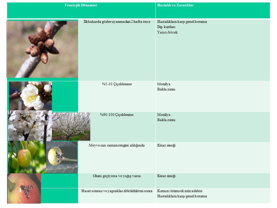 Fenolojik DönemlerHastalık ve Zararlılar İlkbaharda gözler uyanmadan 2 hafta önce Hastalıklara karşı genel koruma Dip kurtları Yazıcı böcek %5-10 Çiçe