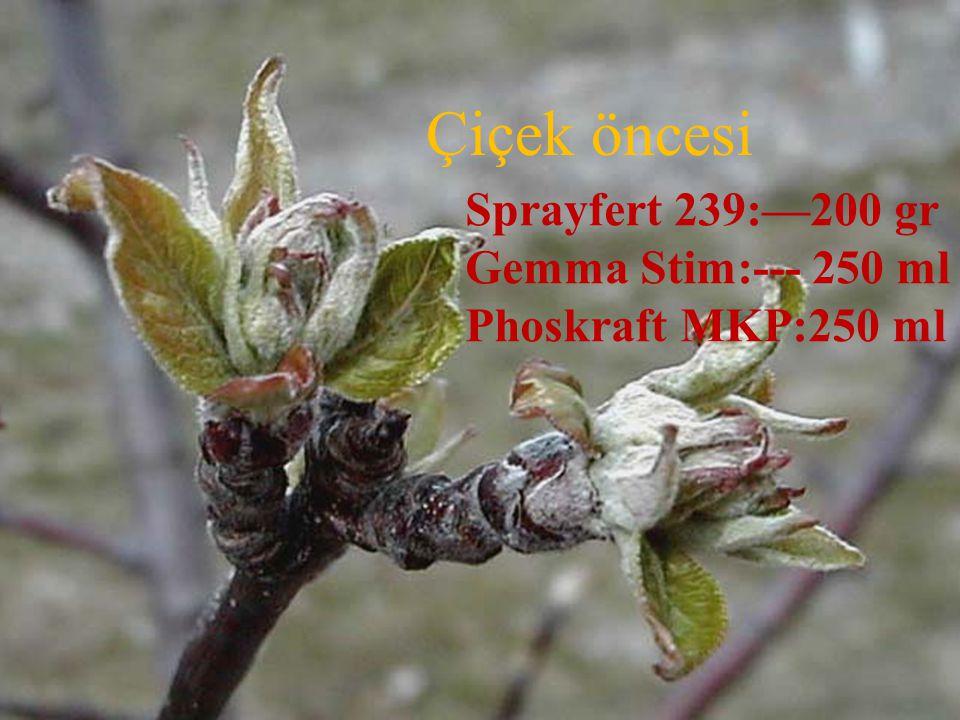Çiçek öncesi Sprayfert 239:—200 gr Gemma Stim:--- 250 ml Phoskraft MKP:250 ml