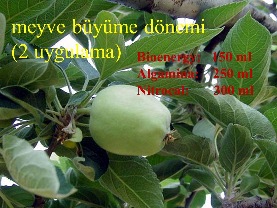 meyve büyüme dönemi (2 uygulama) Bioenergy: 150 ml Algamina: 250 ml Nitrocal: 300 ml