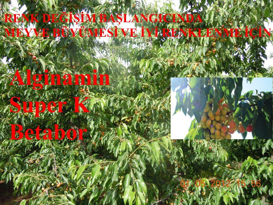 Petal yaprakları dökülmeye başlayınca Sprayfert Global: 200 ml Nitrocal: 250 ml Agrumax: 250 gr