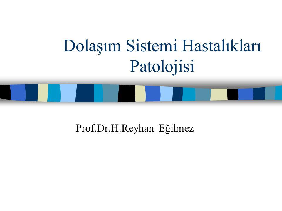Dolaşım Sistemi Hastalıkları Patolojisi Prof.Dr.H.Reyhan Eğilmez