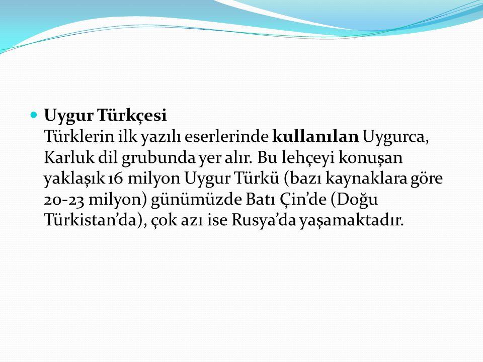 Uygur Türkçesi Türklerin ilk yazılı eserlerinde kullanılan Uygurca, Karluk dil grubunda yer alır. Bu lehçeyi konuşan yaklaşık 16 milyon Uygur Türkü (b