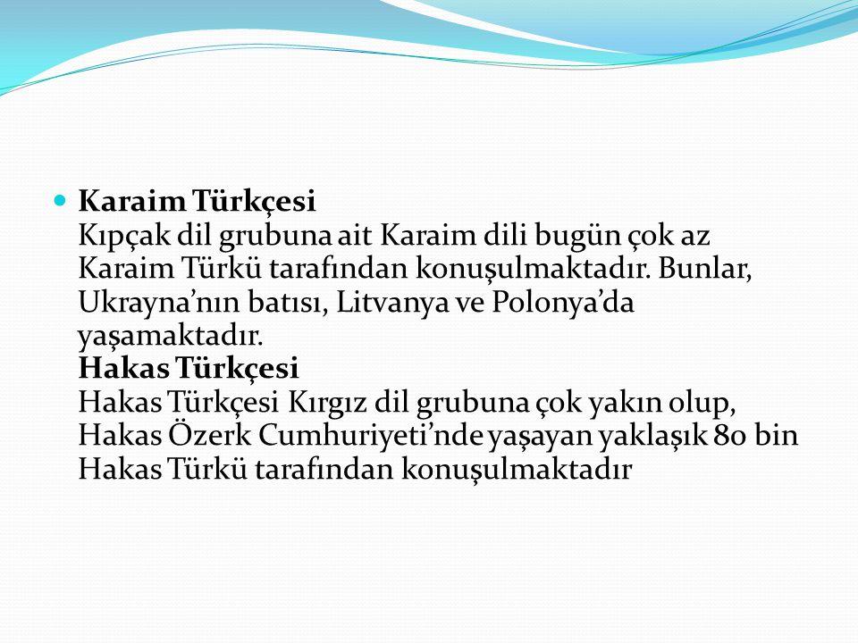 Karaim Türkçesi Kıpçak dil grubuna ait Karaim dili bugün çok az Karaim Türkü tarafından konuşulmaktadır. Bunlar, Ukrayna'nın batısı, Litvanya ve Polon