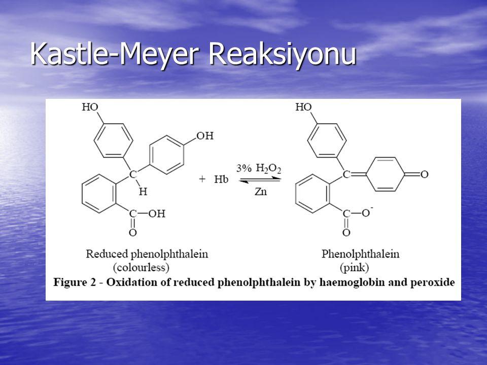 Kastle-Meyer Reaksiyonu
