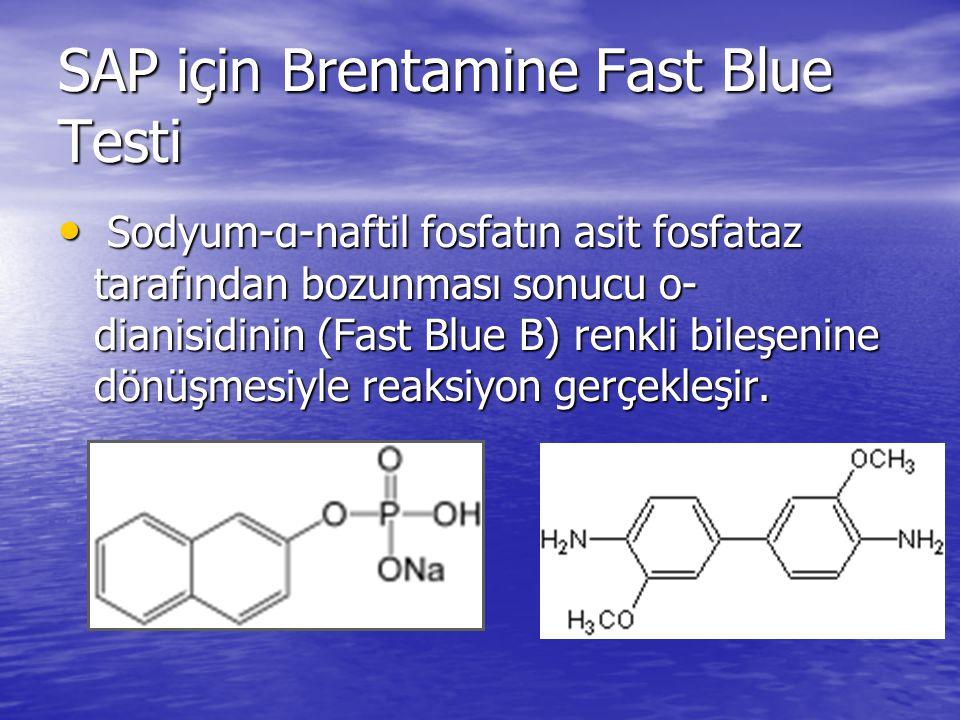 SAP için Brentamine Fast Blue Testi Sodyum-α-naftil fosfatın asit fosfataz tarafından bozunması sonucu o- dianisidinin (Fast Blue B) renkli bileşenine dönüşmesiyle reaksiyon gerçekleşir.