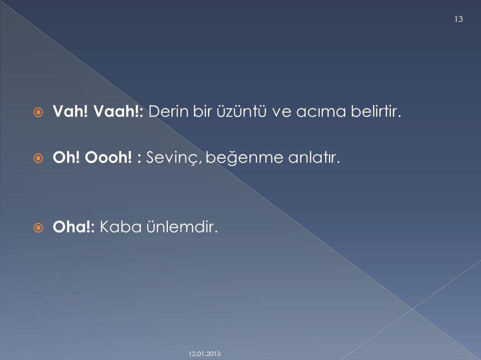  Ah. (aah!): Özlem, istek, acıma, ya da üzüntüyü belirtmede kullanılır.