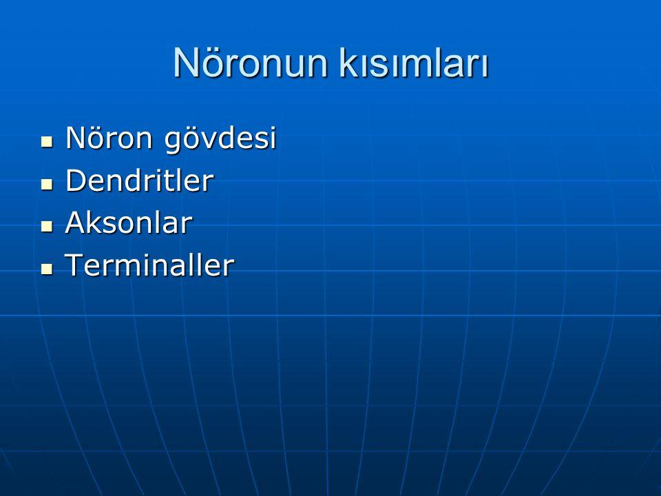Nöronun kısımları Nöron gövdesi Nöron gövdesi Dendritler Dendritler Aksonlar Aksonlar Terminaller Terminaller