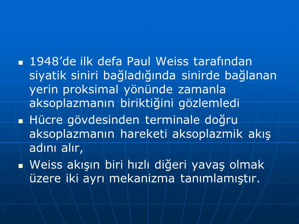 1948'de ilk defa Paul Weiss tarafından siyatik siniri bağladığında sinirde bağlanan yerin proksimal yönünde zamanla aksoplazmanın biriktiğini gözlemledi Hücre gövdesinden terminale doğru aksoplazmanın hareketi aksoplazmik akış adını alır, Weiss akışın biri hızlı diğeri yavaş olmak üzere iki ayrı mekanizma tanımlamıştır.
