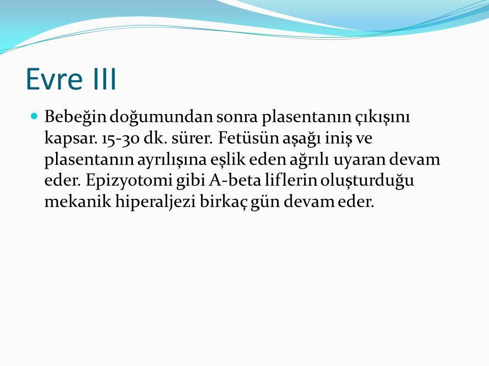 Evre III Bebeğin doğumundan sonra plasentanın çıkışını kapsar. 15-30 dk. sürer. Fetüsün aşağı iniş ve plasentanın ayrılışına eşlik eden ağrılı uyaran