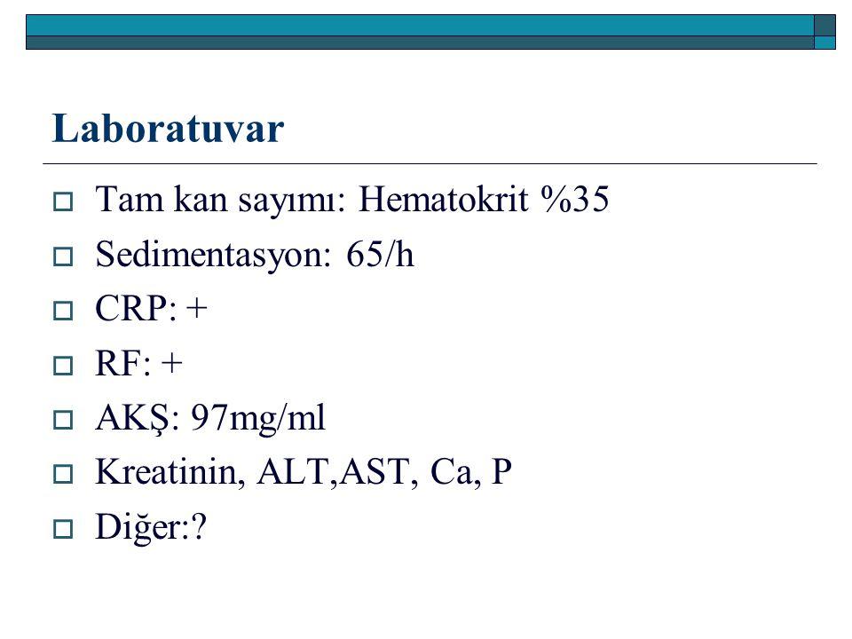 Laboratuvar  Tam kan sayımı: Hematokrit %35  Sedimentasyon: 65/h  CRP: +  RF: +  AKŞ: 97mg/ml  Kreatinin, ALT,AST, Ca, P  Diğer:?