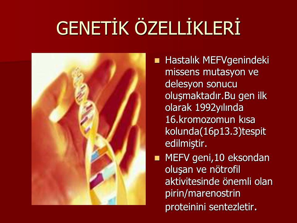 GENETİK ÖZELLİKLERİ Hastalık MEFVgenindeki missens mutasyon ve delesyon sonucu oluşmaktadır.Bu gen ilk olarak 1992yılında 16.kromozomun kısa kolunda(1