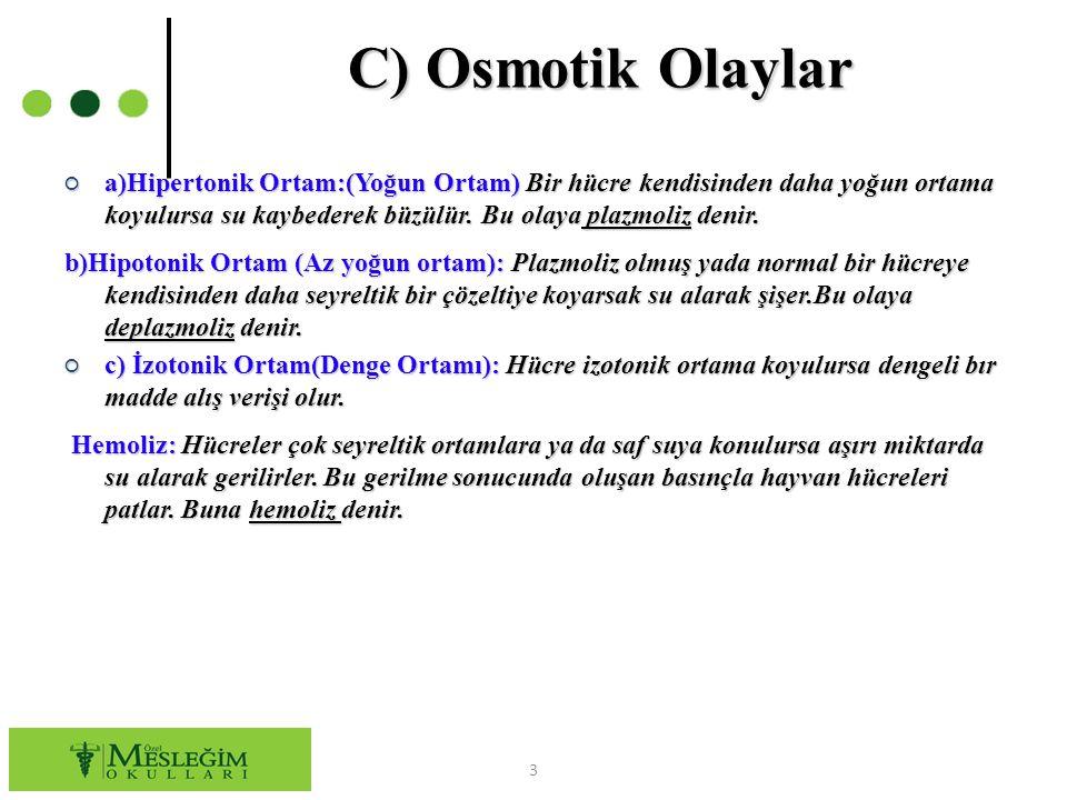 C) Osmotik Olaylar ○ a)Hipertonik Ortam:(Yoğun Ortam)Bir hücre kendisinden daha yoğun ortama koyulursa su kaybederek büzülür. Bu olaya plazmoliz denir