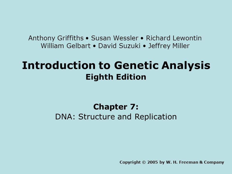 Introduction to Genetic Analysis Eighth Edition Chapter 7: DNA: Structure and Replication Copyright © 2005 by W.