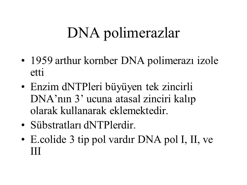 DNA pol Özellikleri