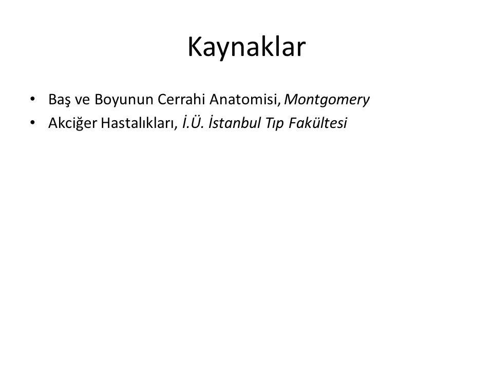 Kaynaklar Baş ve Boyunun Cerrahi Anatomisi, Montgomery Akciğer Hastalıkları, İ.Ü. İstanbul Tıp Fakültesi