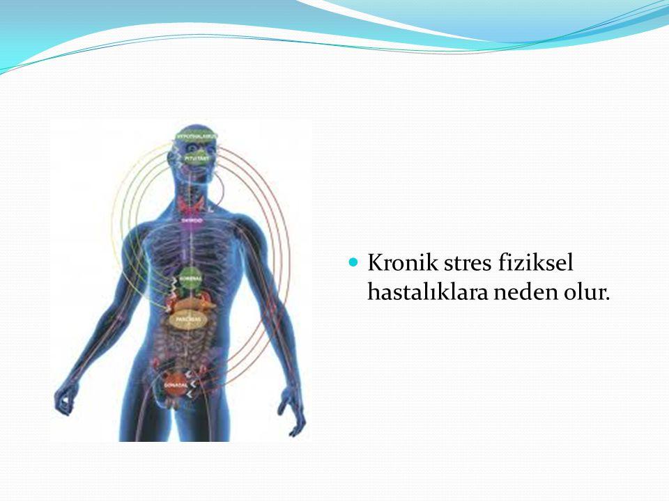 Kronik stres fiziksel hastalıklara neden olur.