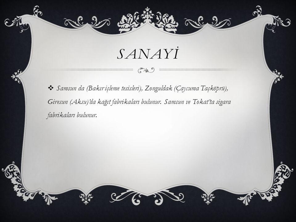 SANAYİ  Samsun da (Bakır işleme tesisleri), Zonguldak (Çaycuma Taşköprü), Giresun (Aksu)'da kağıt fabrikaları bulunur. Samsun ve Tokat'ta sigara fabr