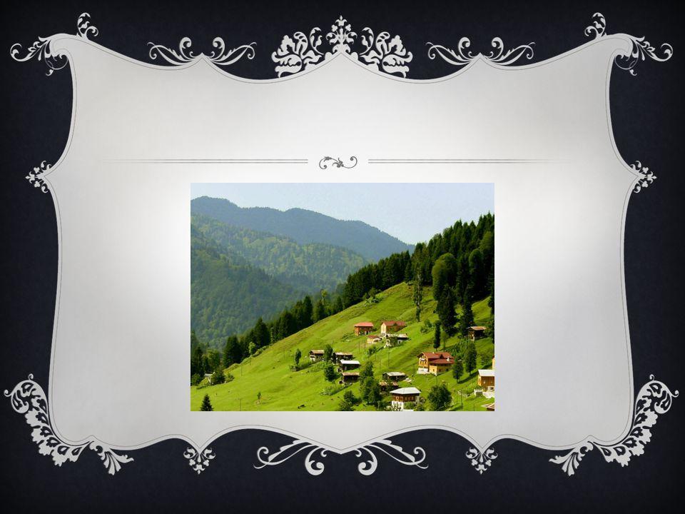  Ayrıca Orta Karadeniz de Kızılırmak'ın oluşturduğu Bafra, Yeşilırmak'ın oluşturduğu Çarşamba delta ovaları yer alır.