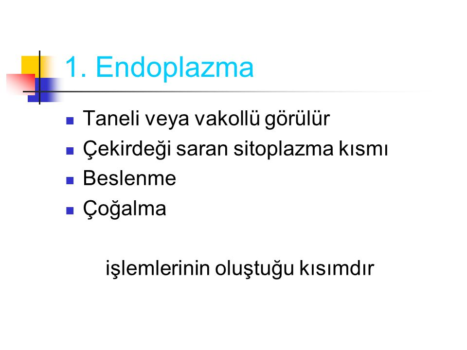 1. Endoplazma Taneli veya vakollü görülür Çekirdeği saran sitoplazma kısmı Beslenme Çoğalma işlemlerinin oluştuğu kısımdır