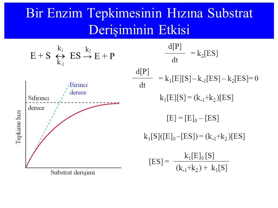 Bir Enzim Tepkimesinin Hızına Substrat Derişiminin Etkisi E + S  ES k1k1 k -1 → E + P k2k2 dt = k 1 [E][S] – k -1 [ES] – k 2 [ES]= 0 d[P] dt = k 2 [E
