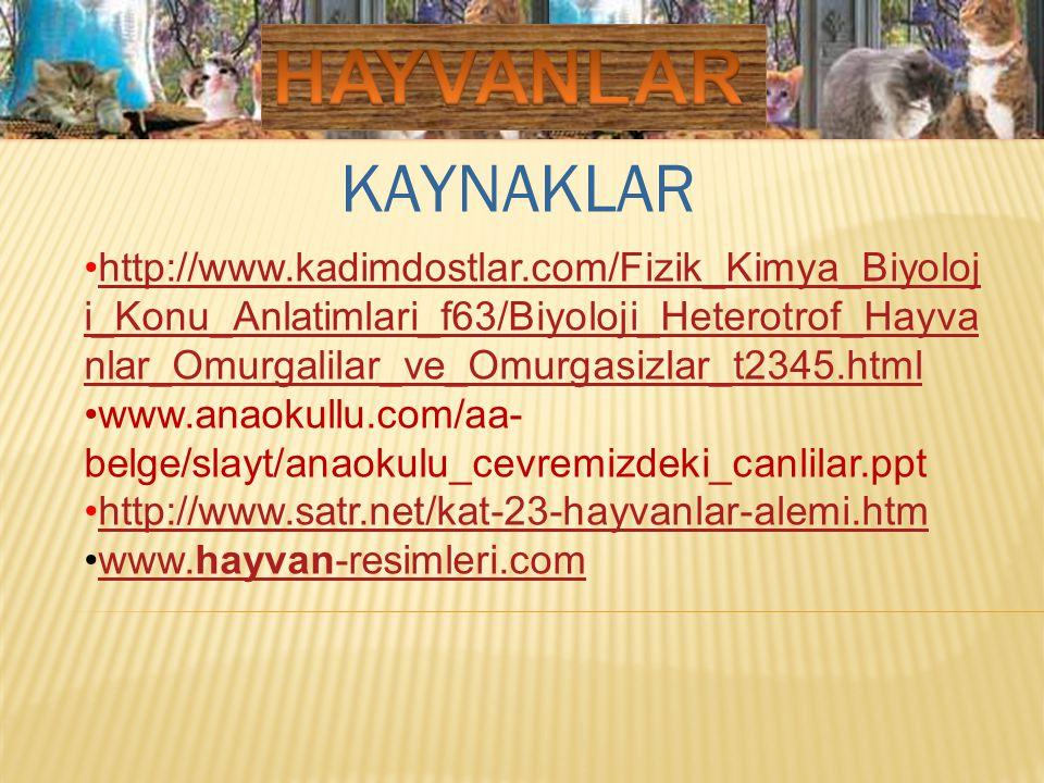 KAYNAKLAR http://www.kadimdostlar.com/Fizik_Kimya_Biyoloj i_Konu_Anlatimlari_f63/Biyoloji_Heterotrof_Hayva nlar_Omurgalilar_ve_Omurgasizlar_t2345.html