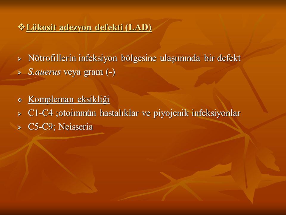  Lökosit adezyon defekti (LAD)  Nötrofillerin infeksiyon bölgesine ulaşımında bir defekt  S.auerus veya gram (-)  Kompleman eksikliği  C1-C4 ;oto